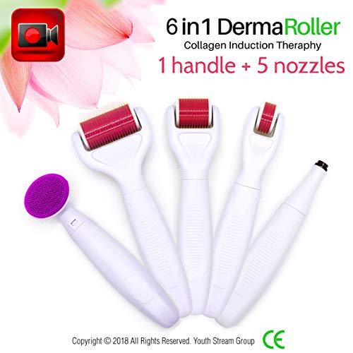 Derma Roller 0.5mm 1mm 1mm 1.5mm aiguilles en titane